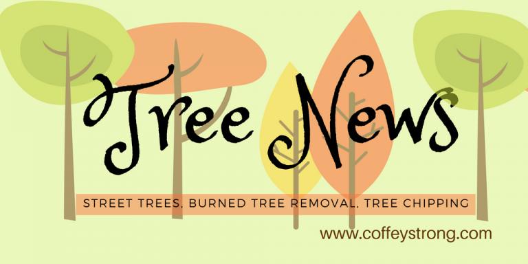 Tree News