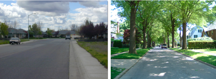 Comparing streets with and without street trees in the planter strip